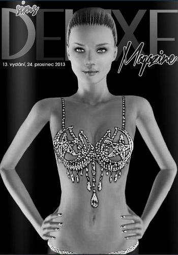Deluxe Magazine 13